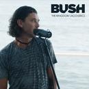 The Kingdom (Acoustic)/Bush