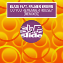 Do You Remember House? (feat. Palmer Brown) [Remixes]/Blaze