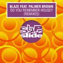 Do You Remember House? (feat. Palmer Brown) [Remixes]/Blaze