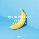 Banana Remixes/David Puentez