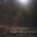 En plats i skogen/Merit Hemmingson