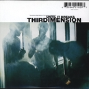 Until It Breaks/Thirdimension