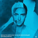 Should've Gone Home (Je ne suis qu'un homme) [Ofenbach Remix]/Måns Zelmerlöw