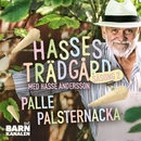 Palle palsternacka/Hasse Andersson