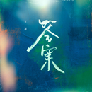 Light/Roy Wang