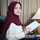 Surah At-Takatsur/Alma