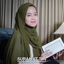 Surah At-Tiin/Alma