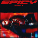 Spicy (feat. J Balvin, YG, Tyga & Post Malone) [Remix]/Ty Dolla $ign