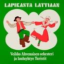 Lapikasta lattiaan/Veikko Ahvenainen