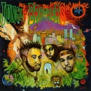 Done By The Forces Of Nature (Deluxe Edition)/Jungle Brothers