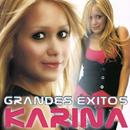 Grandes Éxitos/Karina