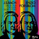 Bach : Urkuteoksia - Organ Works/Enzio Forsblom