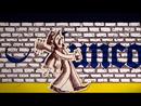 Junco Partner (Acoustic)/Joe Strummer