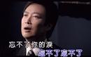 Endless Love/Fei Yu-Ching