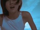 Abscondence [MV-digital]/Sun Yan-Zi
