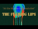 At the Movies on Quaaludes (Lyric Video)/The Flaming Lips