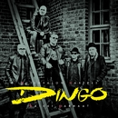 Autiotalon aarteet - Kaikki parhaat/Dingo