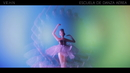 Escuela de danza aérea (Lyric Video)/Love Of Lesbian