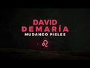 Mudando pieles/David Demaria