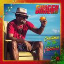 Amazing Christmas (feat. Hannah Brier)/Shaggy