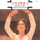 AMAPOLA/沢田研二