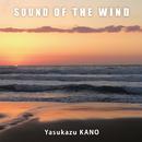 SOUND OF THE WIND/狩野泰一