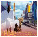 NMB48 Team N 3rd stage ここにだって天使はいる/NMB48
