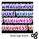 VIVIDNESS/Analogroove