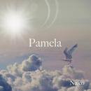 Pamela/Nalco