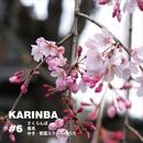 #6 さくらんぼ / 寝息 / ゆき/karinba