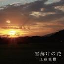 雪解けの花/江藤雅樹