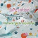 rhinoceros & repetition/Sancantion