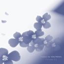 きみに夢中 Flowers for IDOLFREAKS/コラージュ 3.x