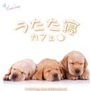 うたた寝カフェ/Various Artists