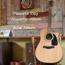 Peaceful Day-Acoustic Album-/木村洋平