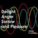 Delight Anger Sorrow and Pleasure/Haltak @ satellites