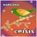 crisis/nirvana