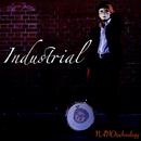 Industrial/NANOtechnology