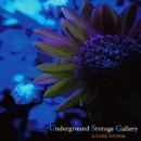 Underground Storage Gallery/大岡英介