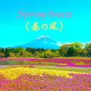 春の風/Sandara Botch