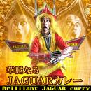 華麗なるJAGUARカレー/JAGUAR