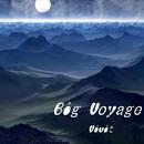 Big Voyage/Vivit