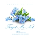 Forget Me Not - single edit - feat. meajyu, MC AMI, MOGGYY(配信限定パッケージ)/VNO