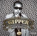 GIP'FILE/GIPPER