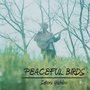 PEACEFUL BIRDS/吉野悟