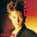 STAY GOLD/本田恭章
