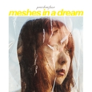 meshes in a dream/peachonfuse