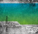 TRIP/dj kou