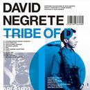 TRIBE OF D/DAVID NEGRETE