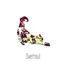 Overhaul/LioneL